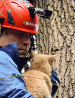 """Treetop Cat Rescue"": Animal Planet series follows duo who save treed felines"