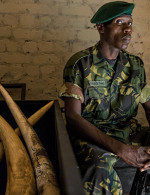 Warlords of Ivory: How Africa's illegal ivory trade funds terrorism